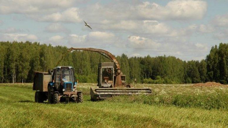 Азербайджанец возрождает колхоз в России